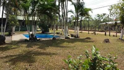 Beautiful  Quinta/Farm in San Carlos