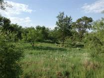 Farms and Acreages Sold in Hall County, ESTELLINE, Texas $369,000