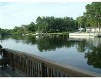 Condos for Rent/Lease in tudor cay, Town 'n' Country, Florida $650 monthly