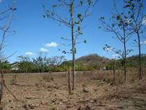 Lots and Land for Sale in Hernandez, Guanacaste $30,000