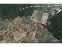 Lots and Land for Sale in Valle del Ejido, Mazatlan, Sinaloa $19,689,338