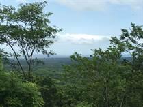 Lots and Land for Sale in Caña Fistula, Santa Cruz, Guanacaste $98,500