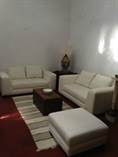 Homes for Rent/Lease in Centro, San Miguel de Allende, Guanajuato $1,400 monthly