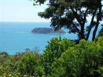 Commercial Real Estate for Sale in Manuel Antonio, Puntarenas $1,750,000