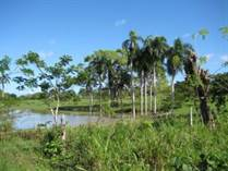 Lots and Land for Sale in Cabarete Bay , Cabarete, Puerto Plata $8,813,800