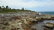 Lots and Land for Sale in Paamul, [Not Specified], Quintana Roo $14,000,000