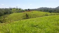 Lots and Land for Sale in Bijagual , San José $80,000