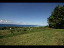 Homes for Sale in Jobos Cliff, Isabela, Puerto Rico $1,400,000