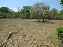 Farms and Acreages for Sale in Hatillo, Dominical, Puntarenas $299,000