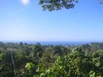 Lots and Land for Sale in Cabrera, Maria Trinidad Sanchez $12