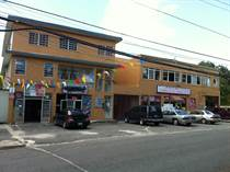 Commercial Real Estate for Sale in Pueblo, Lajas, Puerto Rico $20,000