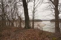 Farms and Acreages Sold in Barren River Lake, Austin, Kentucky $218,000