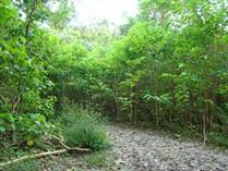 Lots and Land for Sale in Palmar, Puntarenas $10,000,000