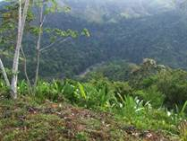 Lots and Land for Sale in Lagunas , Dominical, Puntarenas $150,000