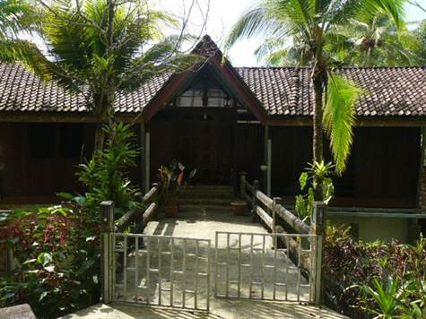 10.5 ACRES - 3 Bedroom Ocean View Home w/ Guest House, Caretaker House, Workshop, Pasture + Jungle!!
