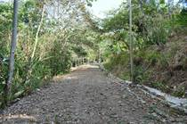 Lots and Land for Sale in Manuel Antonio, Puntarenas $125,000