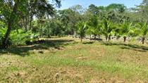 Lots and Land for Sale in Uvita, Puntarenas $129,000