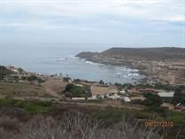 Lots and Land for Sale in Ejido Coronel Esteban Cantú, Ensenada, Baja California $25,000