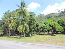 Commercial Real Estate for Sale in Dominical, Puntarenas $398,000