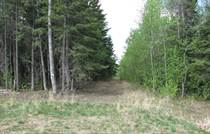 Lots and Land for Sale in Lessard Landing, Cherhill, Alberta $69,900