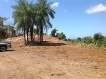 Lots and Land for Sale in Barrio Higuillar, Dorado, Puerto Rico $17,800,000