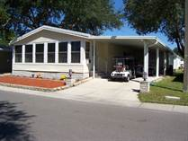 Homes for Sale in Hacienda Heights, Riverview, Florida $74,900