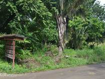 Lots and Land for Sale in Nosara, Guanacaste $275,000