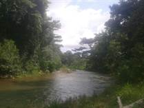 Farms and Acreages for Sale in Ojochal, Puntarenas $189,000