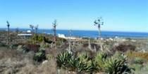 Lots and Land for Sale in Ursulo Galvan, Ensenada, Baja California $980,000