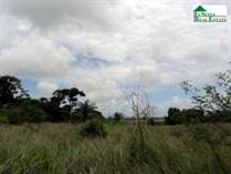 Lots and Land for Sale in Teakettle, Cayo District, Cayo $750,000