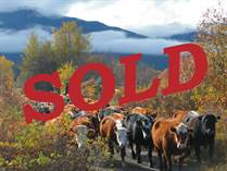 Farms and Acreages Sold in South West Merritt, Merritt, British Columbia $4,490,000