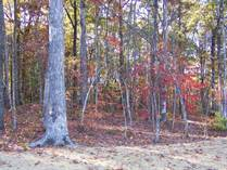 Lots and Land for Sale in Spruce Creek, Jamestown, Tennessee $40,000