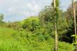 Lots and Land for Sale in Cortez, Tres Rios, Puntarenas $45,000