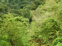 Lots and Land for Sale in Ojochal, Puntarenas $219,000
