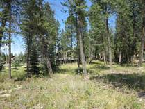 Lots and Land for Sale in Invermere, Invermere Rural, British Columbia $94,000