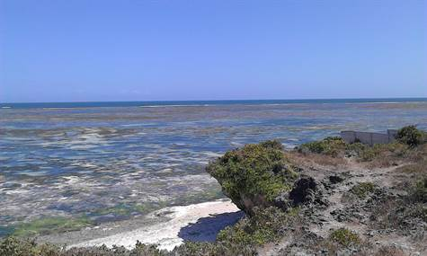 Beach properties for sale in Watamu Kenya
