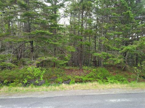 Lot or Land for Sale in Beach Meadows, Nova Scotia $19,000