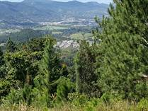 Lots and Land for Sale in Beatriz, Cayey, Puerto Rico $110,000