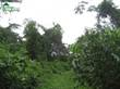 Lots and Land for Sale in Mahogany Heights, Belize District, Belize $990,000
