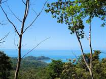 Farms and Acreages for Sale in Dominicalito, Dominical, Puntarenas $1,420,000