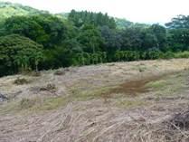 Lots and Land for Sale in Santa Eulalia, Atenas, Alajuela $105,000