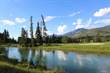 Lots and Land for Sale in Fairmont Hot Springs, Fairmont, British Columbia $199,000