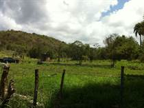 Lots and Land for Sale in Bo. Minillas, San Germán, Puerto Rico $49,000