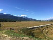Lots and Land for Sale in Valemount, British Columbia $600,000