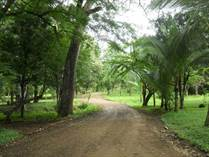 Lots and Land for Sale in Matapalo Beach , Guanacaste $90,000