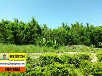 Lots and Land for Sale in La Mulata, Sosua, Puerto Plata $37,000