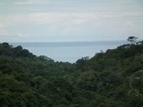 Farms and Acreages for Sale in Uvita, Puntarenas $450,000