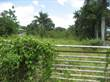 Lots and Land for Sale in Mamey, Aguada, Puerto Rico $49,900