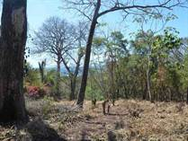 Lots and Land for Sale in Nosara, Guanacaste $189,000