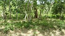 Lots and Land for Sale in Playas Del Coco, Guanacaste $1,243,500